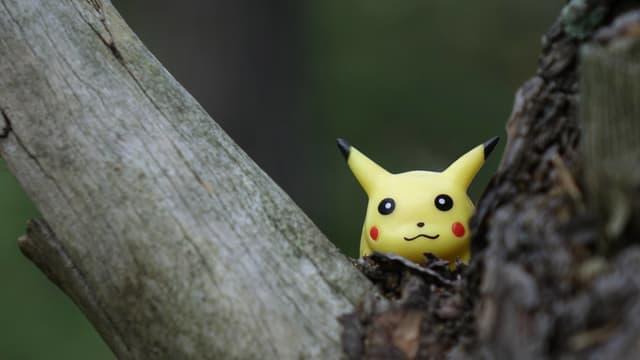 Ein Pikachu-Pokémon sitzt in einer Astgabel.