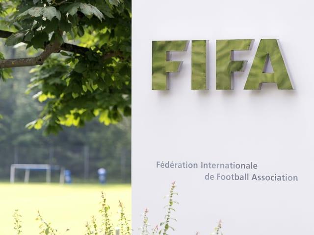 Bild vom Hauptsitz des Fussball-Weltverbands Fifa in Zürich