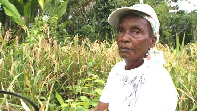 Video «Leonor Murillo baut wieder Reis an» abspielen