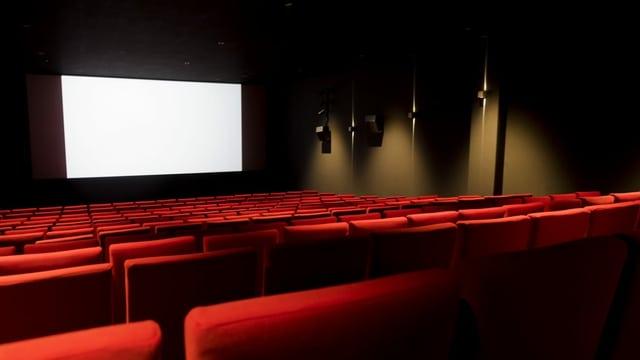 Purtret d'in kino, da vesair èn las sutgas cotschnas e davant la paraid alva.