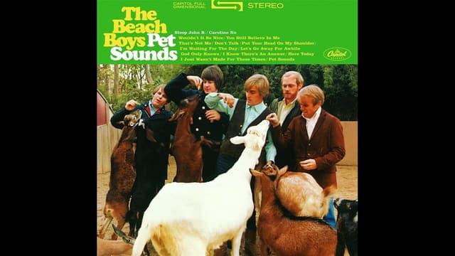 Cover da l'album Pet Sounds da la gruppa The Beach Boys.