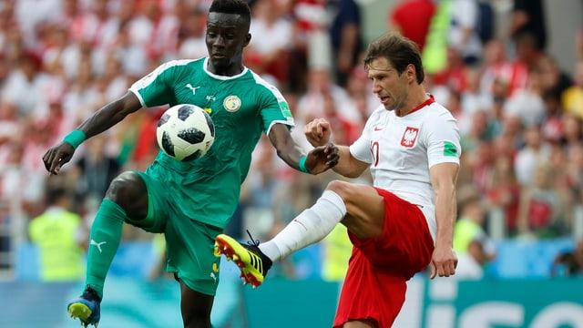Idrissa Gueye (sanester) dal Senegal e Grzegorz Krychowiak da la Pologna