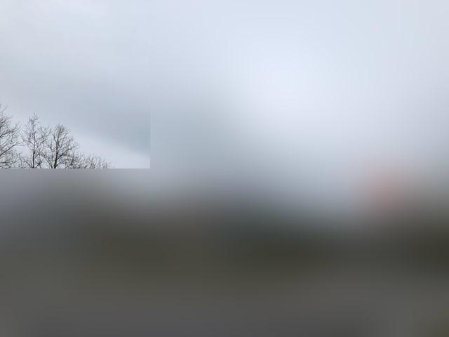 verschwommenes Bild: Grauton