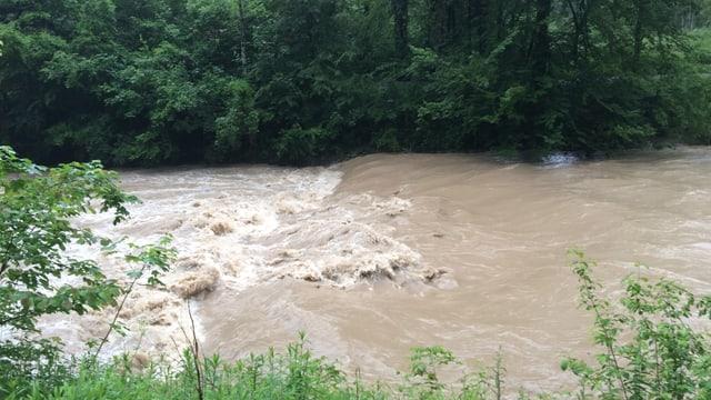 Der viele Regen führte immer wieder zu Hochwasser, so auch am 9. Juni an der Töss.