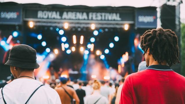 Bild des Publikums am Royal Arena Festival
