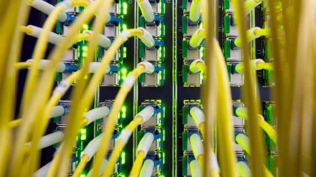 In panel central per fibras da vaider.