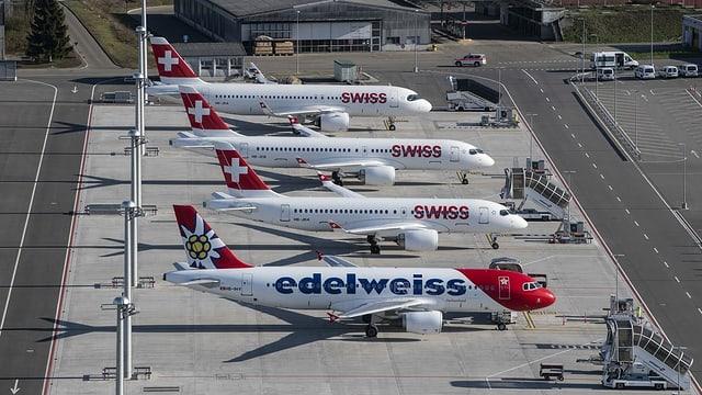 Swiss und Edelweiss.