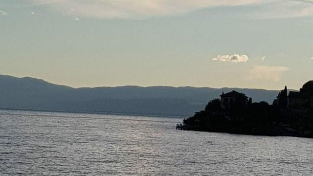Blick von Rivaz/VD über den Genfersee.