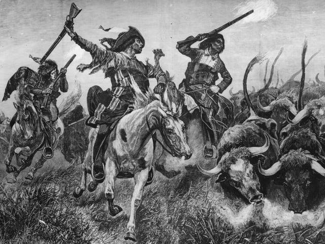 Cowboy treiben ihre Herde ein.