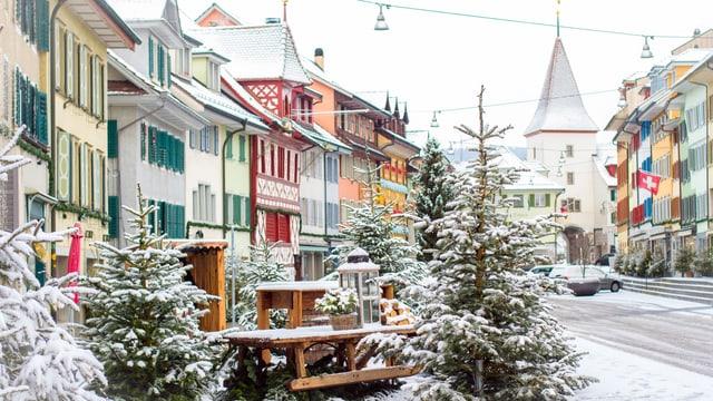 Altstadt mit etwas Neuschnee, verschneite Christbäume im Vordergrund.