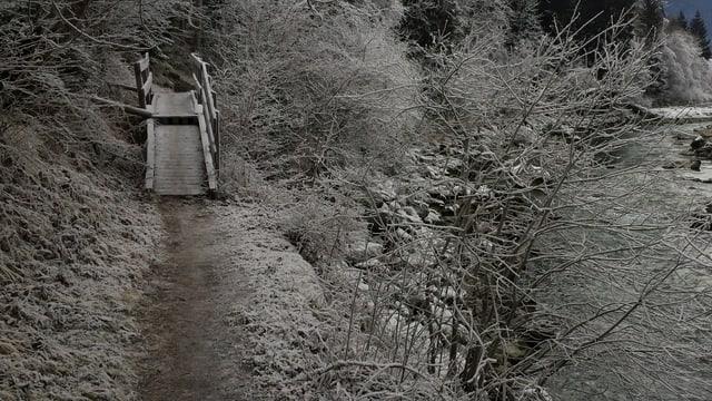 Ina punt per il peduns sper il Rain en la Ruinaulta