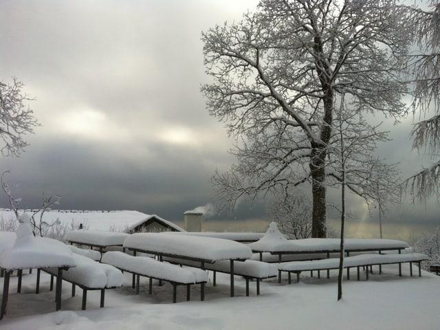 Schnee auf dem Bachtel Kulm.