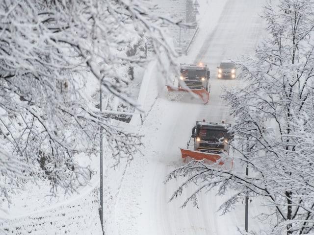Schneepflüge auf verschneiter Strasse.