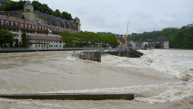 Hoher Wasserstand in der Matte Bern (Archivbild 2013)