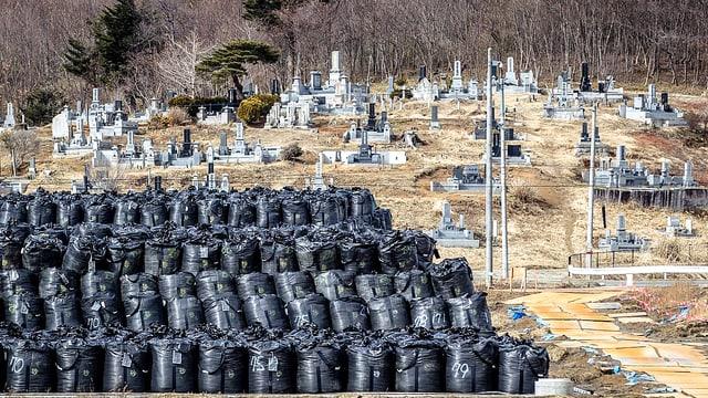 Ein Depot mit schwarzen Plastiksäcken. In ihnen lagert radioaktive Erde aus der Region des japanischen Kernkraftwerks Dai-ichi in Fukushima.