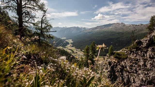 Vista sin la Val Müstair.