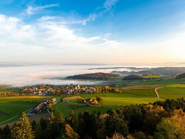 Nebel über dem Flachland
