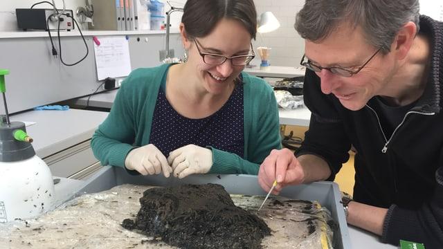 Mitarbeiter der Kantonsarchäologie untersuchen die Erdblöcke, welche die Taucher aus dem Greifensee gehoben haben.