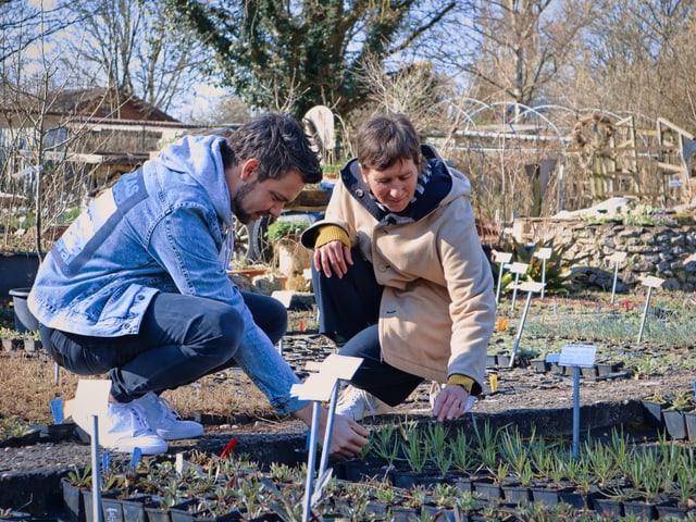 Michel Birri und Isabelle Blum suchen Pflanzen aus.