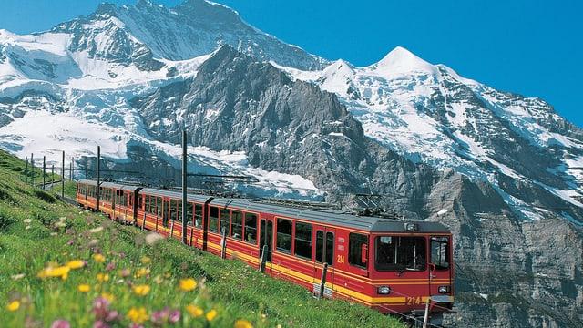 Die Jungfraubahn neben einer grünen Wiese.