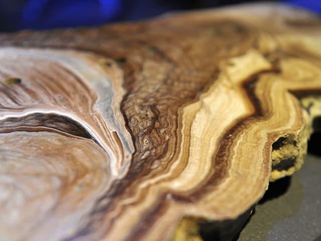 Ein Stalagmit - man sieht wie bei einem Baum die Jahrringe verschieden gefärbte Schichten.