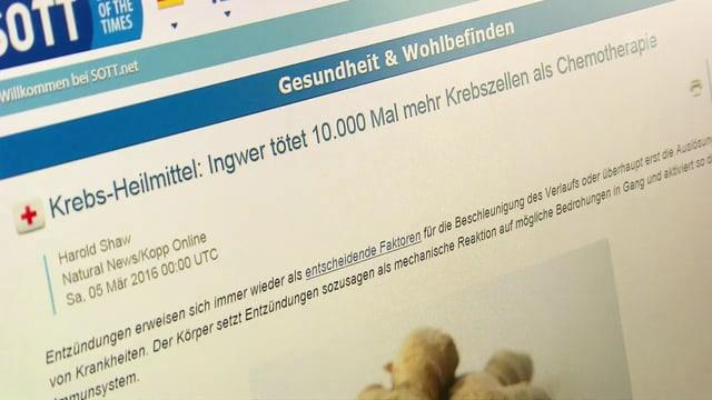 Screenshot einer Internetseite über Ingwer.