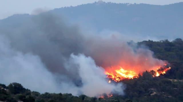 Ein Feuer zerstört den Wald in der Provinz Tarragona.