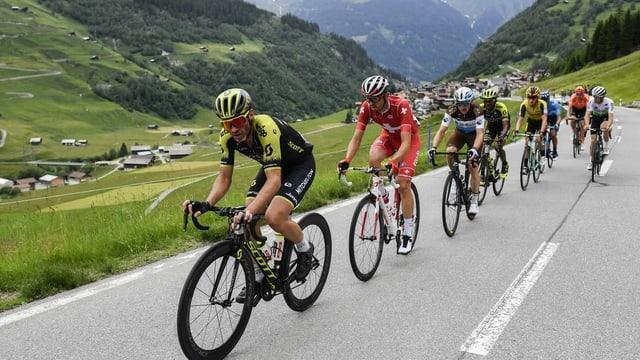 Velocipedists da cursa durant il Tour de Suisse 2020.