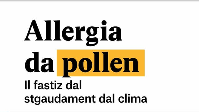 Laschar ir video «Explainer: Allergia da pollen»