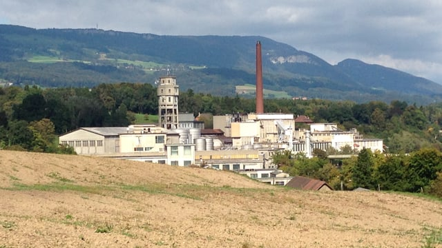 Blick von Feldbrunnen-St. Niklaus her Richtung Borregard-Areal.