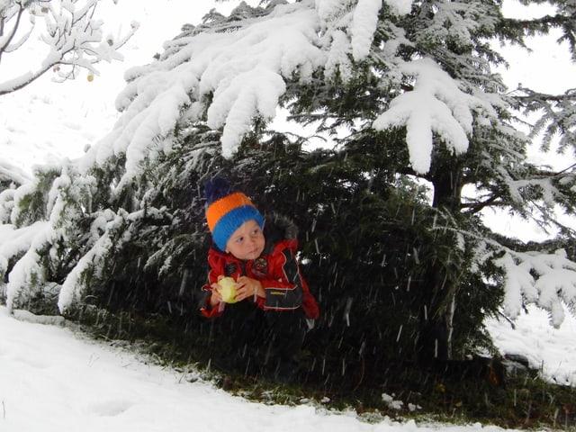 kleiner Junge unter Baum mit Schnee