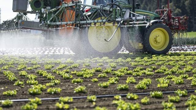 Pesticids