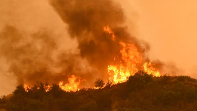 Incendi da frustgaglia e guaud, flommas autas.