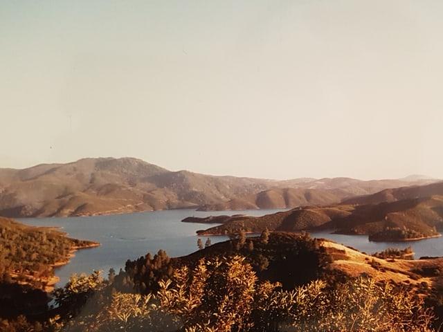 Das Bild zeigt eine Aussicht auf den See.