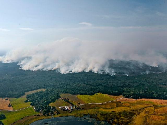 Luftaufnahme eines Waldgebiets, über dem dichter Rauch aufsteigt.