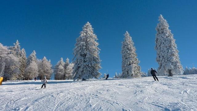 Skipiste mit viel Schnee.