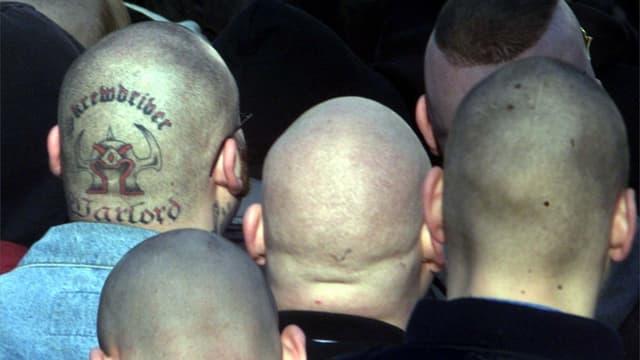 Nazi-Glatzköpfe von hinten