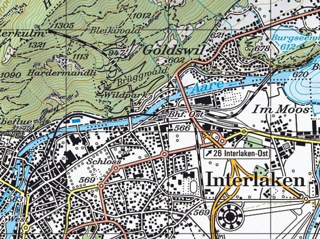 Schweizer Landeskarte von der Region Interlaken.