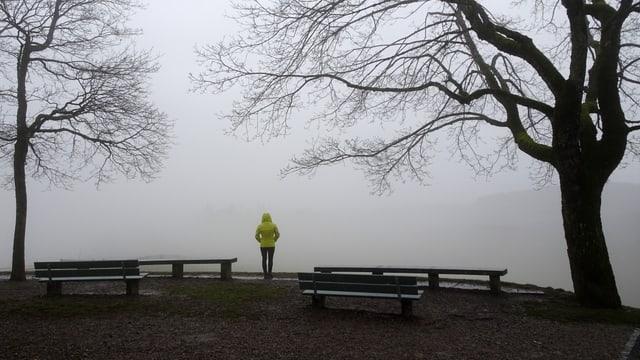 Bild vom Gurten oberhalb von Bern. Zwei Bäume und eine Person, im Hintergrund viel Nebelgrau.