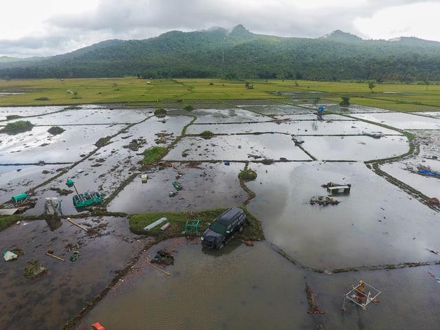 Überflutete Reisfelder