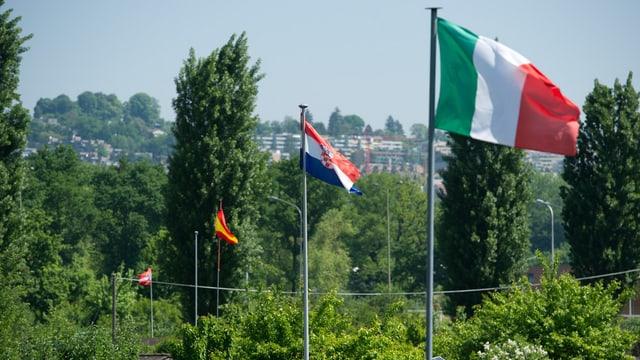 4 ausländische Flaggen wehen über einer Schrebergartensiedlung in der Stadt Zürich.