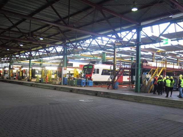 Züge in der Werkstatt.