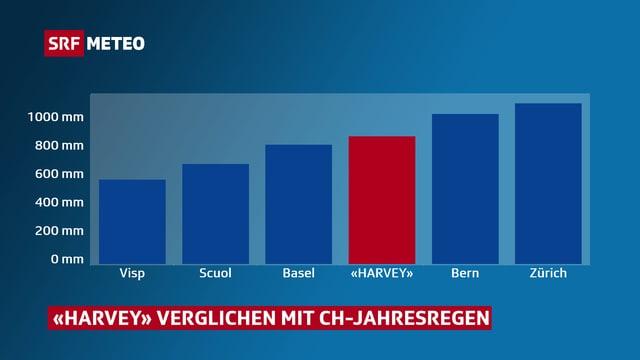 Balkendiagramm, Y-Achse von 0 bis 1000 mm. Balken für Visp, Scuol, Basel, «Harvey», Bern und Zürich