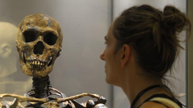 Eine Ausstellungsbesucherin vor einer Vitrine mit der Rekonstruktion eines Neandertaler-Skelettes in Dresden.