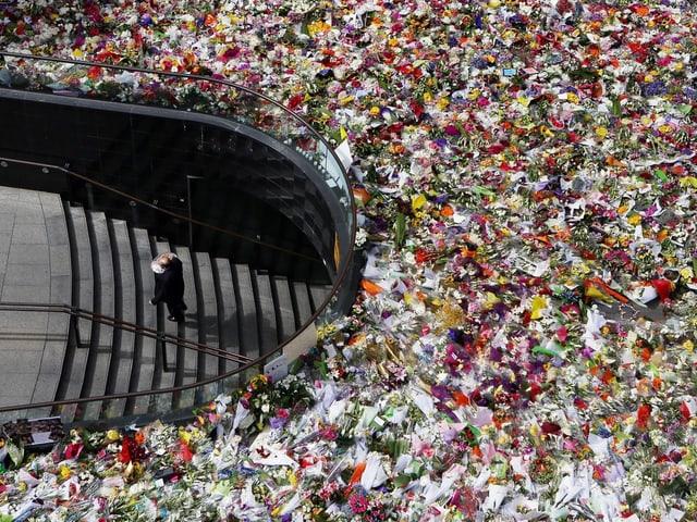 Blumenmeer bei Tatort.