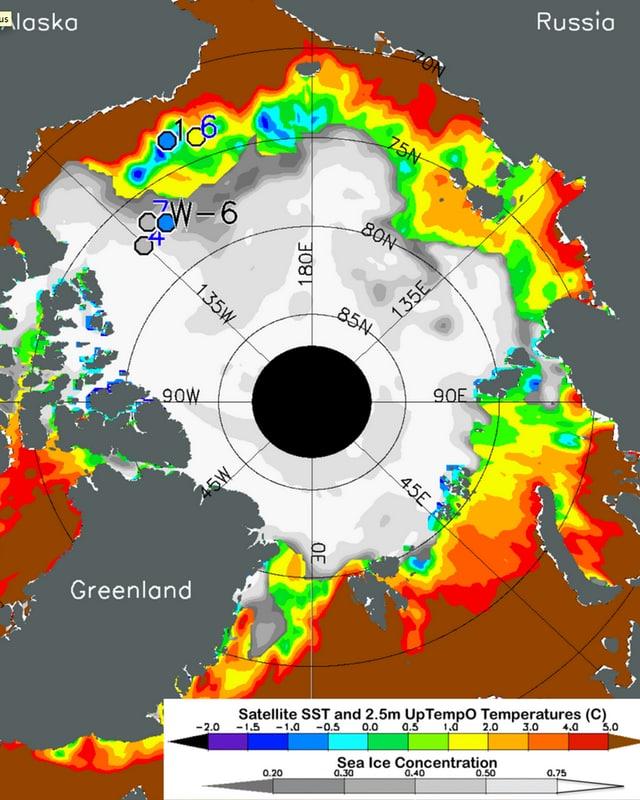 Bild der Eisausdehnung rund um den Nordpol.