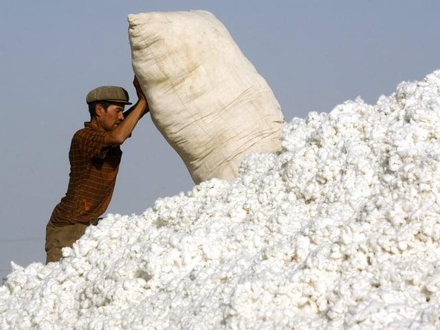 Mann leert Baumwollsack aus