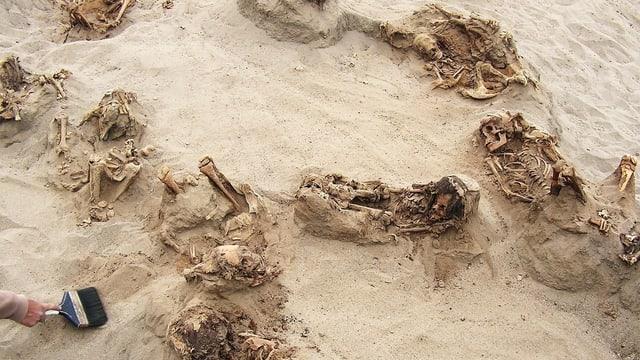 Halb aus dem Sand ragende Skelette und eine Hand mit Pinsel.