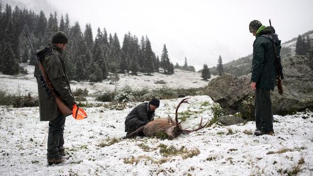 Drei Jäger erlegen einen Hirsch