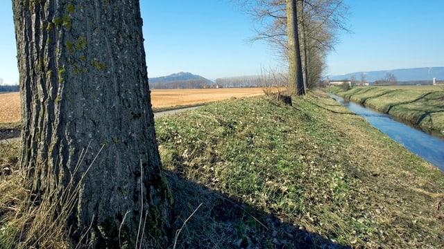 Im Aargau flammt der Streit über den nötigen Abstand von Gewässern zu Agrar- und Bauland erneut auf.